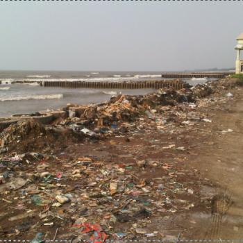 sampah pantai widuri