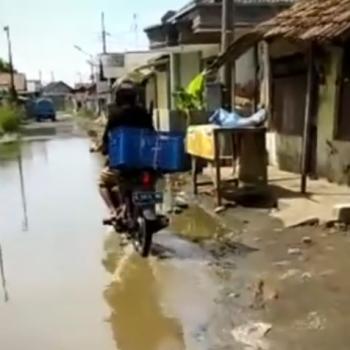jalan dampyak