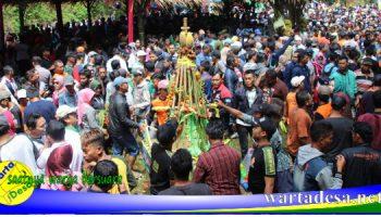 festival durian lolong