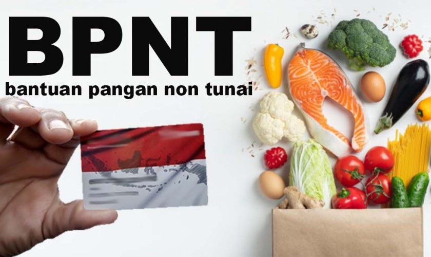 BNPT-1
